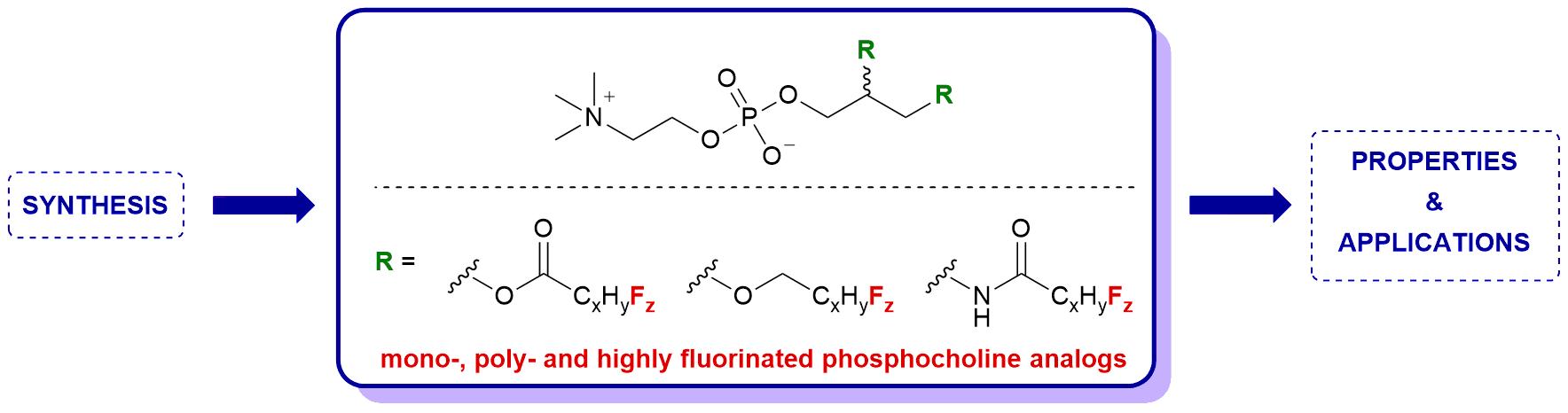Højmoderne Pr Jean-François Paquin – Groupe de recherche en chimie organique NU-41